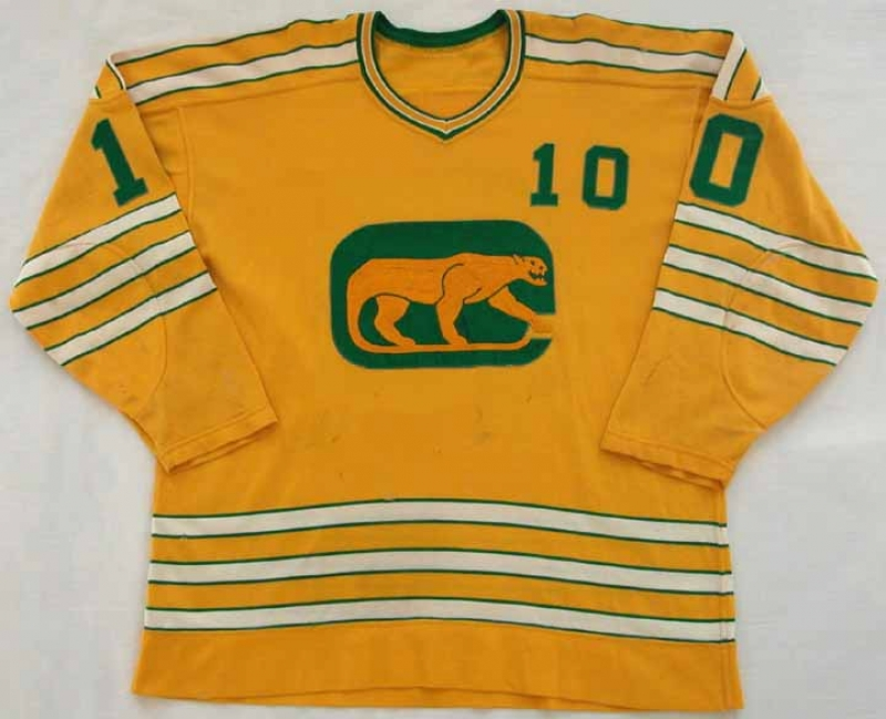 0a5c13ff7c9 1972-73 Rick Morris Chicago Cougars Game Worn Jersey ...