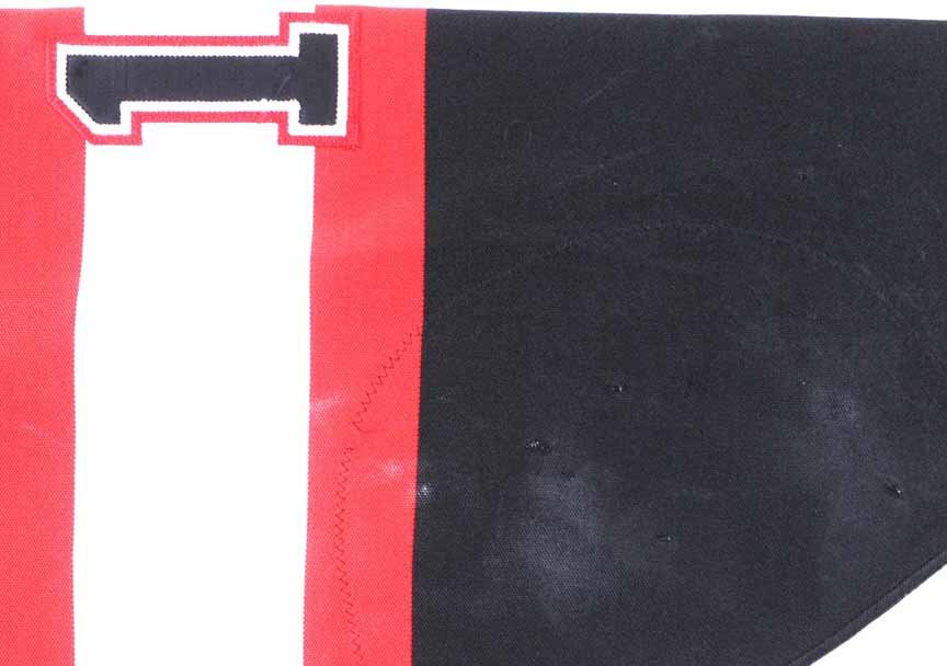 6ab560b25 1997-98 Daniel Alfredsson Ottawa Senators Game Worn Jersey - Photo ...