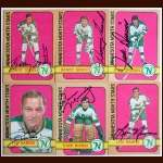 1972-73 Autographed Minnesota North Stars Card Group of 6