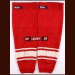 Brian Lashoff Detroit Red Wings Winter Classic Game Worn Socks and Locker Room Nameplate – 2014 Winter Classic – Team Letter