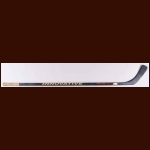 Sergei Fedorov Detroit Red Wings Grey Innovative Game Used Stick – Hockeytown Hologram