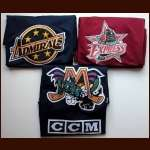 Minor League Practice Jersey Group of 3 - Norfolk Admirals, Roanoke Express & Mobile Mystik
