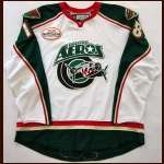 2007-08 Coulton Gillies Houston Aeros Game Worn Jersey - Team Letter